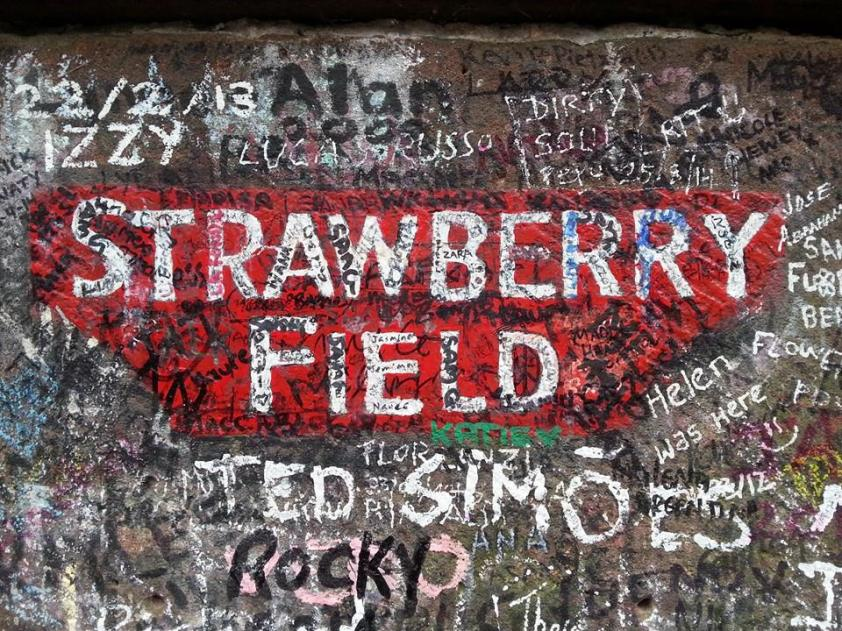 strawberry-field